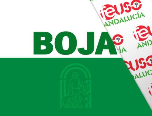 Convocatoria de la Junta de Andalucía para acogerse al régimen de conciertos educativos