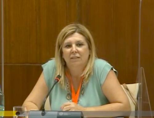 FEUSO, en el Parlamento andaluz por el Pacto Social por la Educación