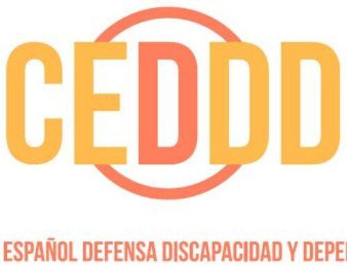 CEDDD, en la que está presente USO, participa en el III Plan de Discapacidad de Andalucía