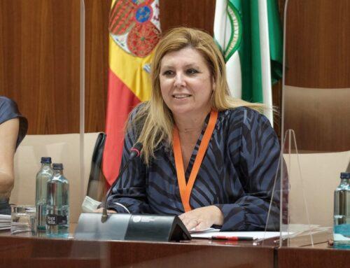 FEUSO solicita en el Parlamento de Andalucía una Ley de Reconocimiento de Autoridad que defienda a todo el profesorado andaluz
