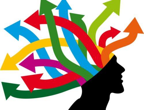 Curso de formación 'Neuroeducación, procesos de memoria, habilidades y TIC'. Reconocido por el MEFP y gratuito para los afiliados a FEUSO