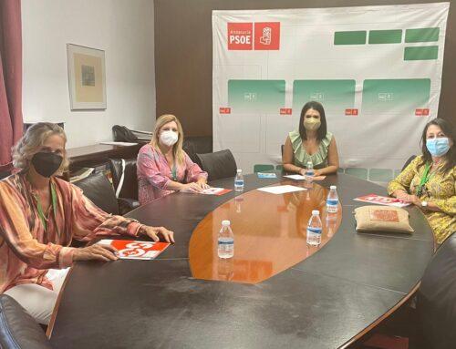 Encuentro con la nueva portavoz de Educación del PSOE en el Parlamento andaluz